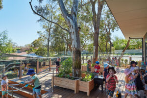 platypus-junction-langwarrin-childcare-kindergarten-garden-gallery-03
